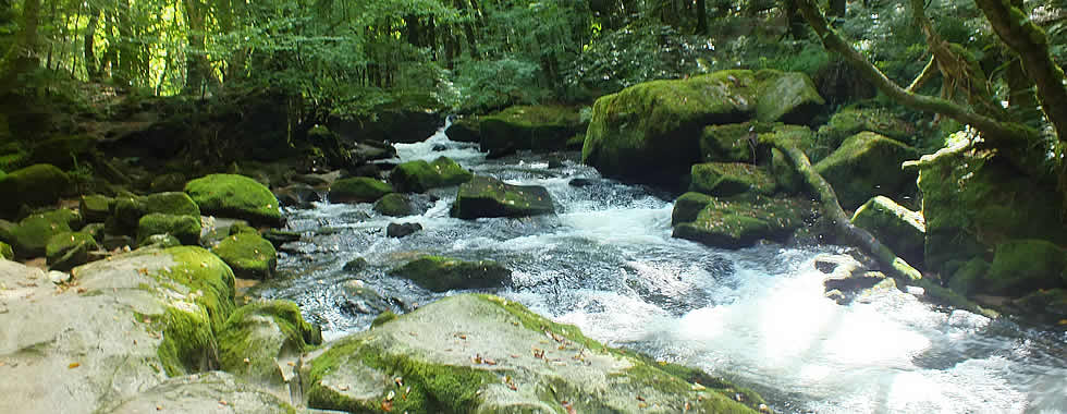 Golitha Falls in the Parish of St Neot
